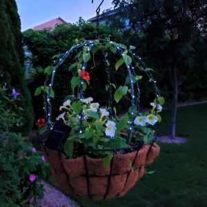 Green Topiary Frame With Solar Lights