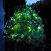 Black Topiary Frame With  Solar Lights