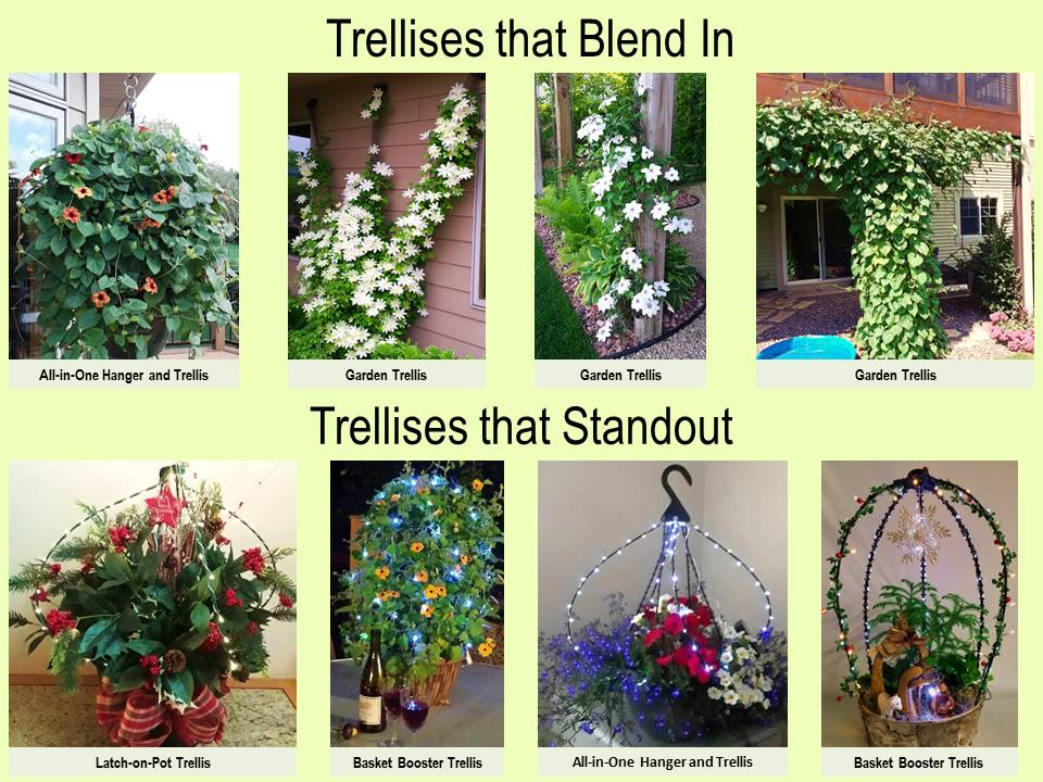 trellises, clematis, vine, gardening, flowering vine, solar, LED, decor, inspiration