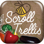 Scroll Trellis is designed for climbing, vining plants, like Clematis and Mandevilla and these products are so so versatile that they can fit in and around most anything in your home's garden, deck, porch, or patio!